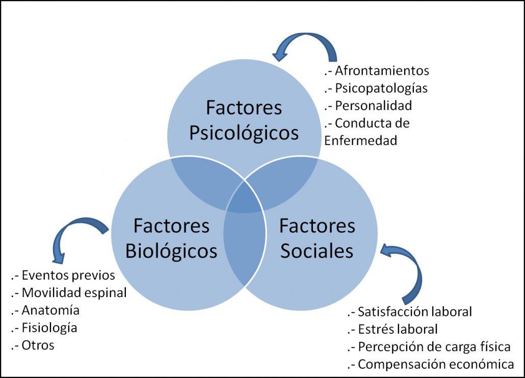 modelo biopsicosocial del dolor